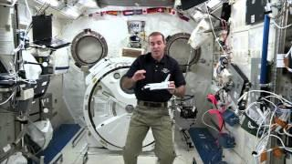 'Cosmos' Honored In Space With Experiment   Video
