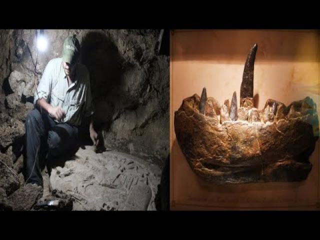 Amazing Archaeological Discovery  Part 19