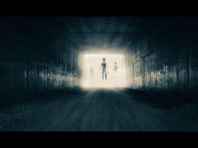 Are UFOs piloted by humans from the future?