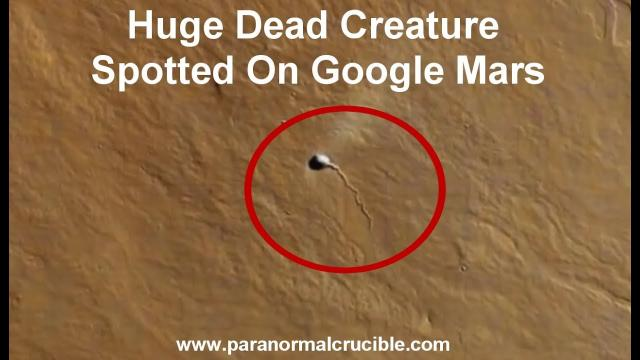 Huge Dead Creature Spotted On Google Mars?